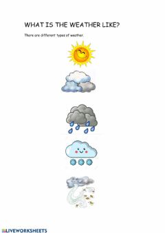 Interactive worksheet What is the weather like