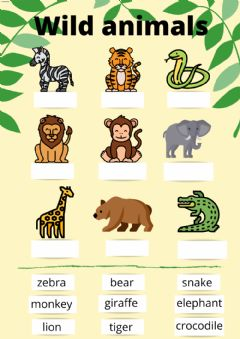 Interactive worksheet Drag and drop Wild Animals