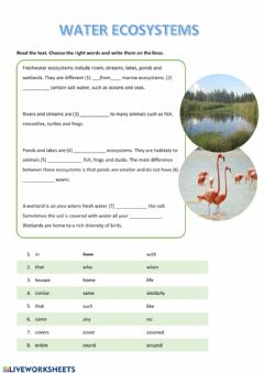 Interactive worksheet Water Ecosystems