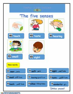 Interactive worksheet Five senses3