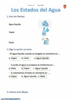 Interactive worksheet Estados del agua 2 (mas facil)