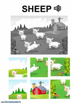 Interactive worksheet sheep puzzle