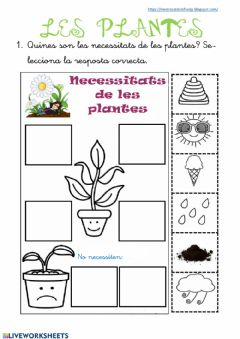Interactive worksheet Les plantes (final)