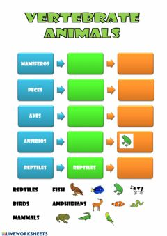 Interactive worksheet Vertebrates 1