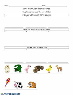 Ficha interactiva Sort Animals by their Features