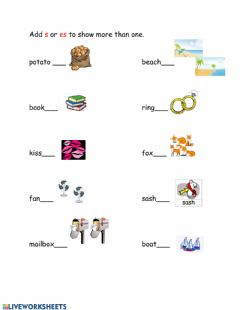 Interactive worksheet Singular and Plural: Adding s or es