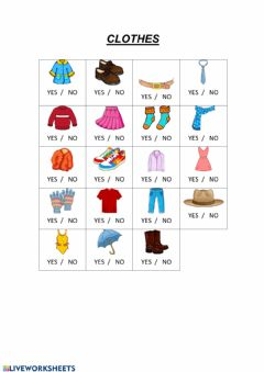 Interactive worksheet Clothes true or false