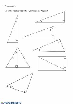 Interactive worksheet Label sides in right angle triangles