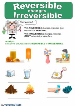 Ficha interactiva Reversible and irreversible changes