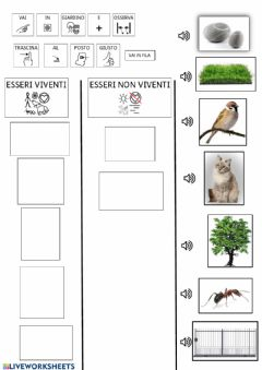 Interactive worksheet Esseri viventi e non viventi CAA