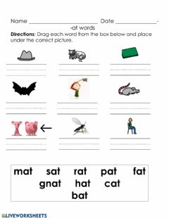 Interactive worksheet Words ending in -at