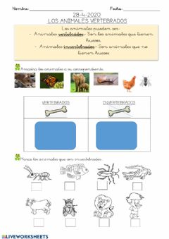 Interactive worksheet Hoja 5: animales vertebrados e invertebtrados 28-4