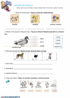 Interactive worksheet Assessment: animals, my free time