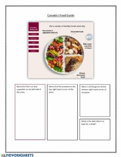 Interactive worksheet Canada's Food Guide Questions
