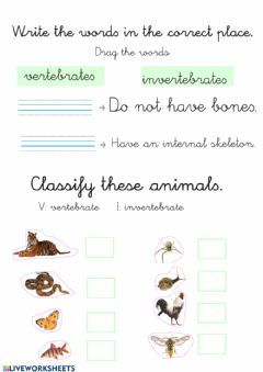 Interactive worksheet Vertebrates and Invertebrates