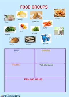 Ficha interactiva Food groups