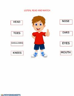 Interactive worksheet The body