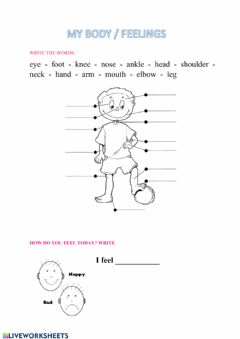 Interactive worksheet My body and feelings