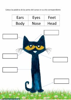 Interactive worksheet Pete the cat's  body