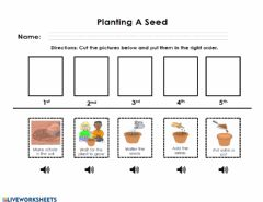 Interactive worksheet Planting a seed sequence