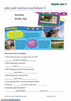 Interactive worksheet Jobs and routines-w3