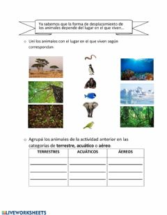 Interactive worksheet Animales y ambiente.
