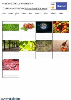 Interactive worksheet FOOD VOCABULARY (for animals)