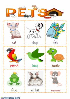 Interactive worksheet Pets - Let's listen