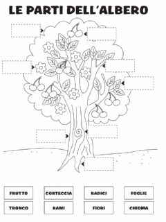 Interactive worksheet Le parti dell'albero