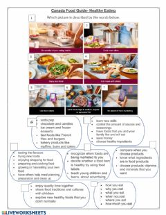 Interactive worksheet Canada Food Guide