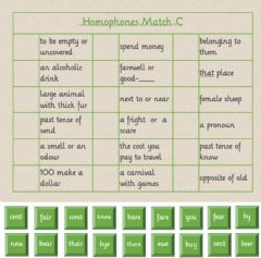 Interactive worksheet Homophones Match 2