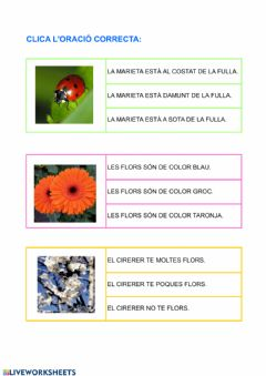 Interactive worksheet Llig