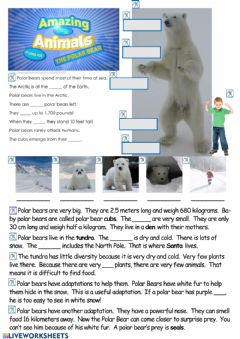 Interactive worksheet Polar Bears