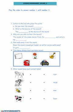 Interactive worksheet Science worksheet Monday