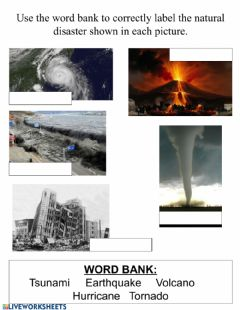 Interactive worksheet Natural Disasters Label