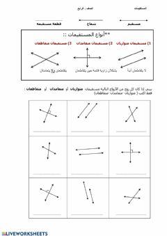 Interactive worksheet المستقيمات