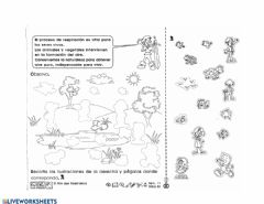 Interactive worksheet Aire
