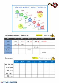 Interactive worksheet Mesures de longiud
