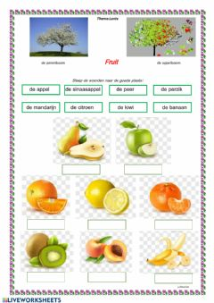 Ficha interactiva Fruit