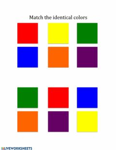 Interactive worksheet Matching Identical Colors