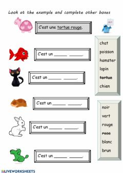 Interactive worksheet Animaux de compagnie-pets in French-écrire
