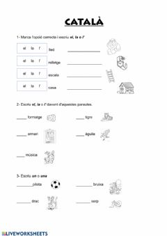 Interactive worksheet Articles i vocabulari