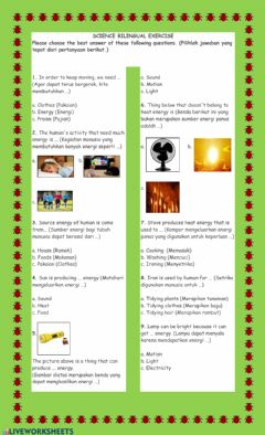 Interactive worksheet SCIENCE BILINGUAL (ENERGY AND ITS USAGE)
