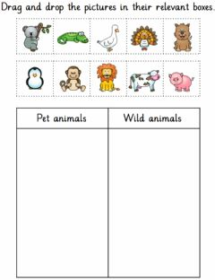 Ficha interactiva Pet and wild animals