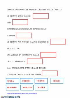 Interactive worksheet Le piante