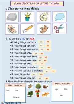 Interactive worksheet Living things