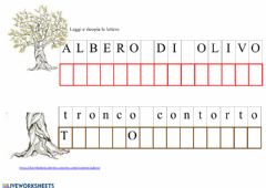 Interactive worksheet Le piante: l' olivo
