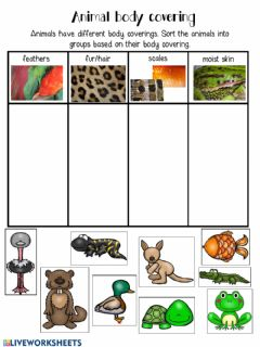 Interactive worksheet Animal Body Covering Classifcation