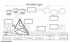 Interactive worksheet The Water Cycle - Assessment 1