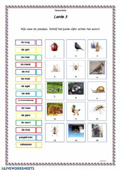 Interactive worksheet Lente 3